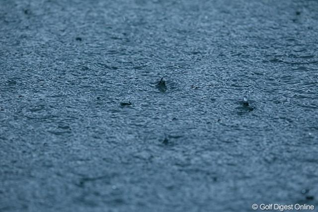 この雨だもん。決断は早くしてほしかった。