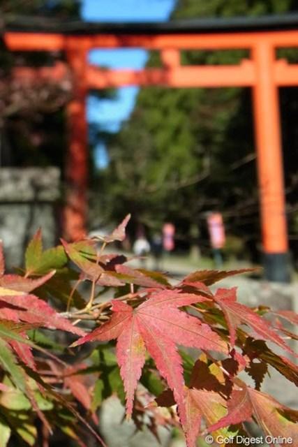 2011年 LPGAツアーチャンピオンシップリコーカップ事前情報 モミジと鳥居 霧島神宮の入口。そろそろ紅葉も見頃を迎えそうです(撮影:リコー CX5)