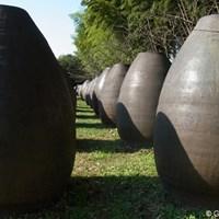 アボカドのオブジェのように見えるのは、古い酒壺。使われなくなった壺が逆さに並べられています(撮影:リコー CX5) 2011年 LPGAツアーチャンピオンシップリコーカップ 事前  霧島酒造