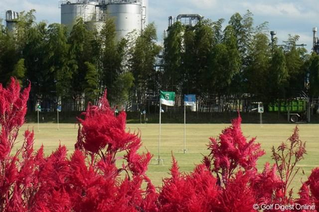 2011年 LPGAツアーチャンピオンシップリコーカップ 事前  グランドゴルフ場 霧島酒造志比田工場内のグランドゴルフ場。プレーフィーは200円です(撮影:リコー CX5)
