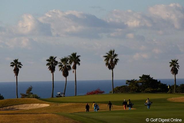 今日は朝から良いお天気。太平洋が見えて、まるでハワイのような雰囲気のKochi黒潮です。