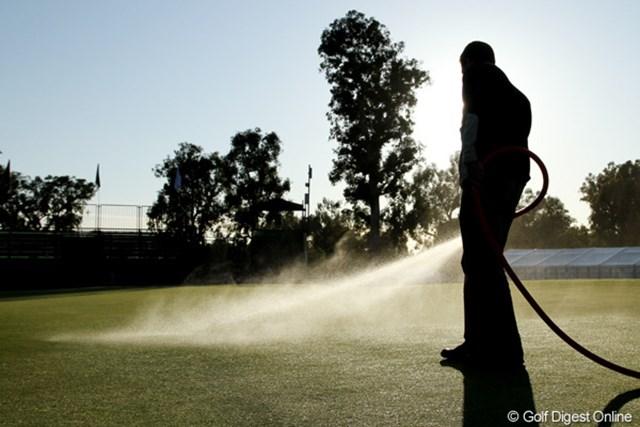 絶妙な分量の水をまくことで最高の状態が保たれる