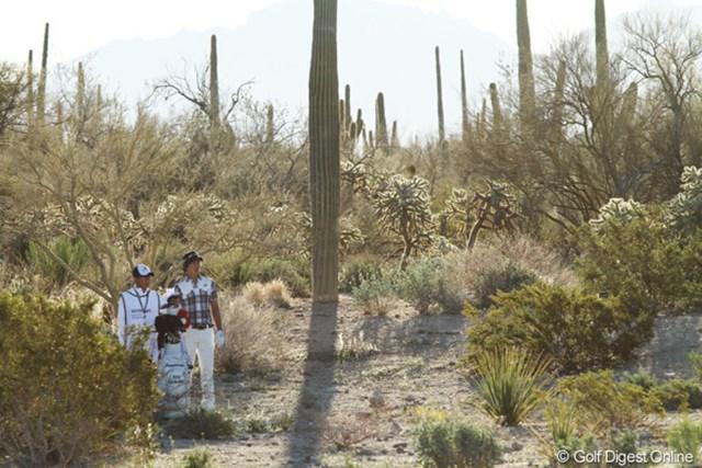 2番ホール、ティショットを左へ曲げて砂漠地帯へ打ち込んだ。打てる場所にさえあればラッキーだ