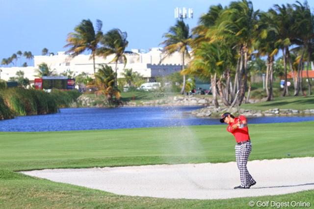 南国リゾートの雰囲気が充満するトランプインターナショナルGC。カリブ海からの強い風が吹きつける
