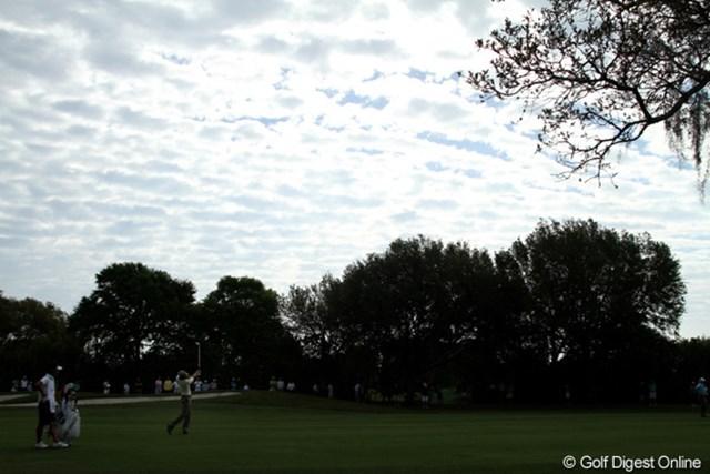 午前中は秋のような空が広がったが、午後には雷雲が近づいた