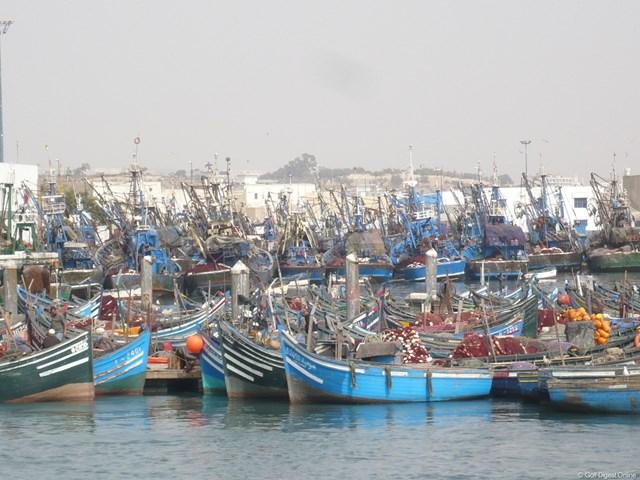 鰯の水揚げ高が世界一の港には、鰯漁の船が連なっている