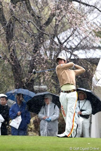 晴れてれば後ろの枝垂れ桜もきれいなんだろ~な?