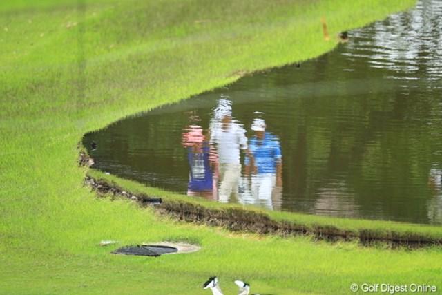 2012年 日本ゴルフツアー選手権 Citibank Cup Shishido Hills 初日 池 池から選手が出てきたらどうする?
