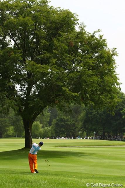 8番ではティショットが大きな木の後ろに行ってしまう不運も。