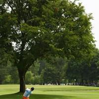 8番ではティショットが大きな木の後ろに行ってしまう不運も。 2012年 サン・クロレラクラシック 最終日 塚田好宣