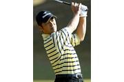 2003年 ゴルフ日本シリーズJTカップ 最終日 伊沢利光