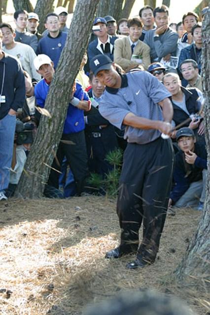 2002年 ダンロップフェニックストーナメント 事前情報 タイガー・ウッズ 出た!タイガーのミラクルショット! 僅か50センチの隙間を通してトラブル脱出に成功。