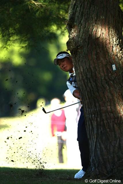 2012年 ブリヂストンオープンゴルフトーナメント 2日目 薗田峻輔 木の陰に隠れているわけではなくボールがこんなところに来ちゃったんだよね
