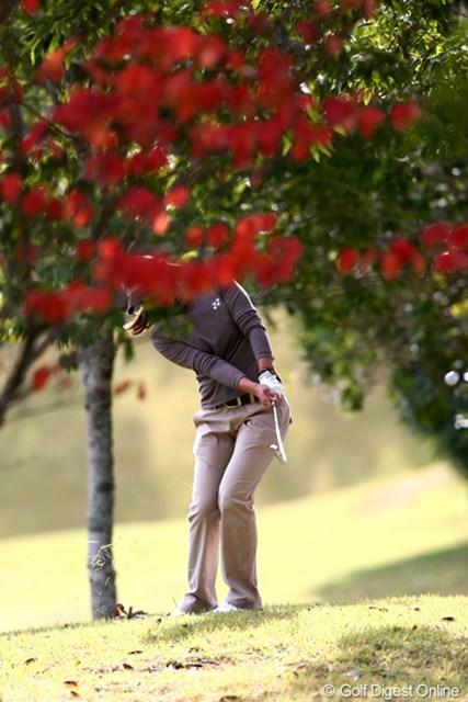 2012年 伊藤園レディスゴルフトーナメント 初日 若林舞衣子 カメラを低くして撮ったんだけど顔が見えず・・・胸のロゴで誰だかわかるよね