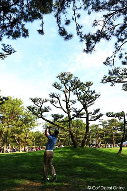 17番Par3のティショットを左に曲げた藤田さん。木の上を越えるロブショットでナイスアプローチ。見事なパーセーブでした。