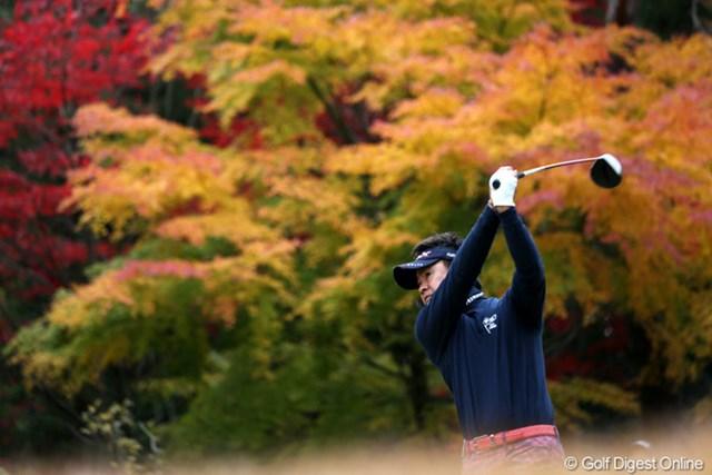 2012年 ゴルフ日本シリーズJTカップ 2日目 藤田寛之 紅葉を背景にティショット