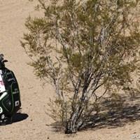 スタイミーにならなかったのは不幸中の幸い。サボテンならかなり危険 2013年 ウェイストマネジメント フェニックスオープン 石川遼フォトギャラリー