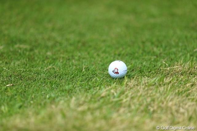 2013年 Tポイントレディスゴルフトーナメント 最終日 ボール 森田プロのボール。猿入り。