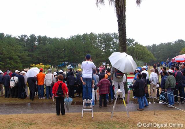 2006年 LPGAツアーチャンピオンシップリコーカップ 最終日 宮里藍を観るには脚立は必携。宮崎のファンはよく知っている (c) RICOH  リコーのデジタルカメラで撮影しました