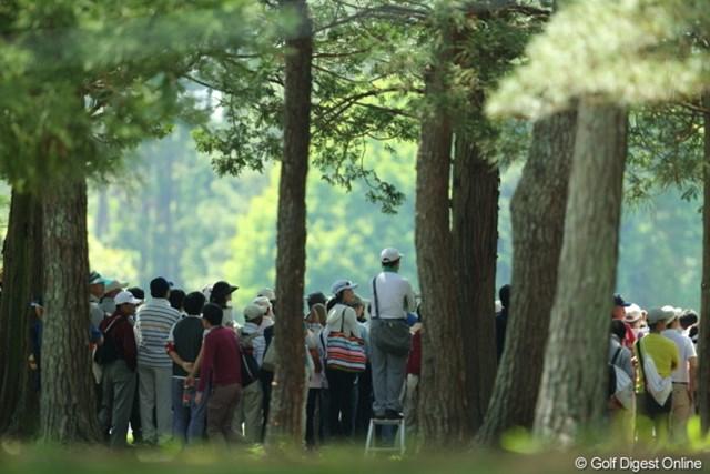 2013年 日本プロゴルフ選手権大会 日清カップヌードル杯 3日目 ギャラリー 松山プロの行方はすぐわかる