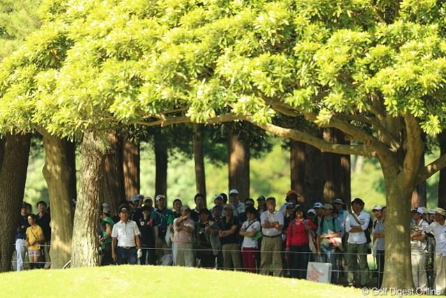 2013年 日本プロゴルフ選手権大会 日清カップヌードル杯 3日目 深堀圭一郎 フカボリーを探せ!