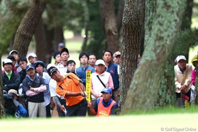 2013年 ダイヤモンドカップゴルフ 初日 松山英樹 ギャラリーの期待を背負ってアプローチ