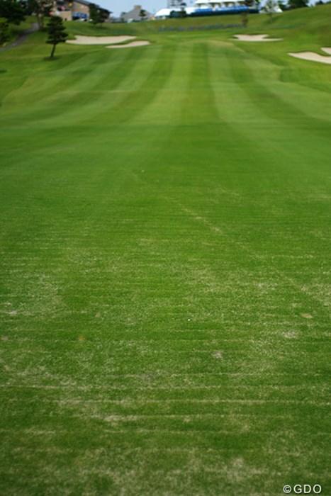 18番のセカンド地点には無数の傷跡が残る。ここは、救済ルールが適用される。 2013年 ヨネックスレディスゴルフトーナメント 事前情報 18番ホール
