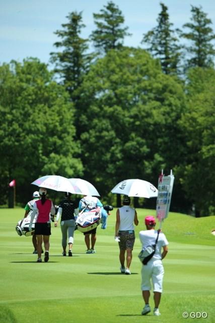 雨が降っても傘ささなきゃだけど、晴天でも傘ささなきゃ。
