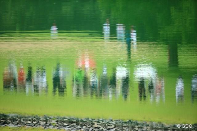 池の精霊たち。