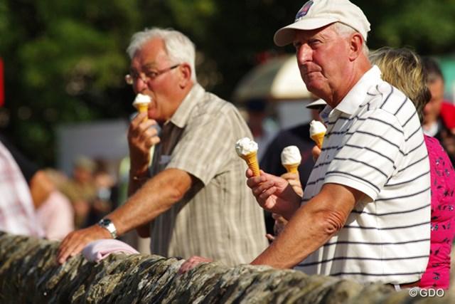 イギリスのソフトクリームは、ほんとにソフトでおいしいです。何歳になっても美味しいものは美味しい