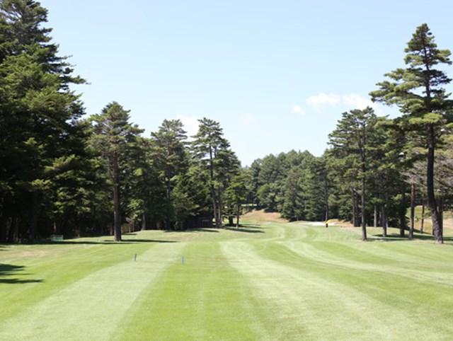 Vol.15 鳴沢フォレストゴルフ&カントリークラブ 11H・504Y・P5