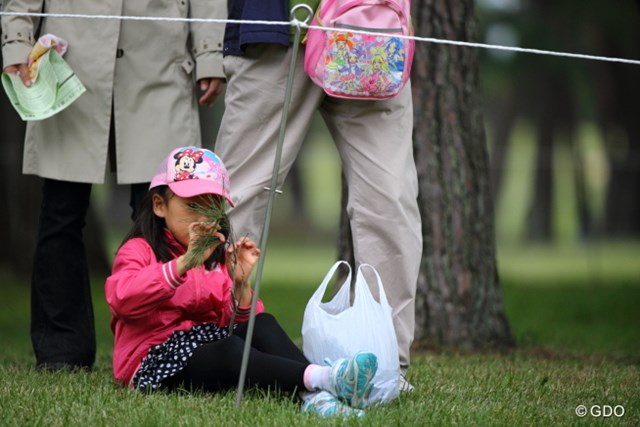2013年 日本オープンゴルフ選手権競技 3日目 ギャラリー アタチ、ゴルフに興味ないもーん。