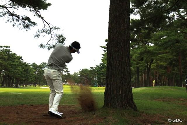 2013年 日本オープンゴルフ選手権競技 3日目 小林正則 ドキューン!この木の反対側だったら最悪だったね。