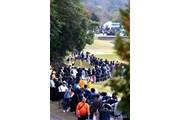 2013年 伊藤園レディスゴルフトーナメント 最終日 横峯さくら