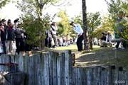 2013年 伊藤園レディスゴルフトーナメント 最終日 渡邉彩香