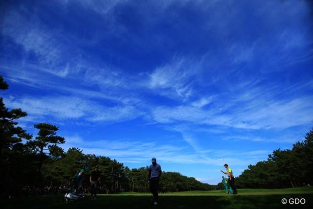南国・宮崎らしい青空と、秋らしい雲の一日でした。