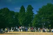 2013年 大王製紙エリエールレディスオープン 最終日 ギャラリー