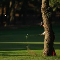 夜中にフェニックスCCに潜り込み、チェーンソーで松の木をすべて切り倒したいプロゴルファーがたくさんいるのではないかと想像します。 2013年 ダンロップフェニックストーナメント 最終日 河野晃一郎