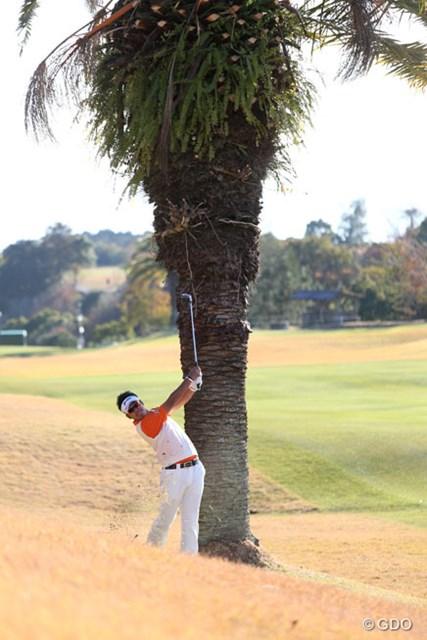 ヤシの木の脇からボールを放つ18番セカンド