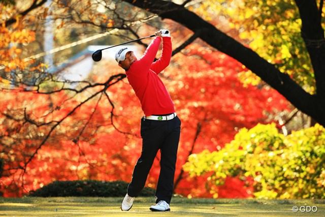 2013年 ゴルフ日本シリーズJTカップ 3日目 小平智 紅葉に赤いセーターが映えますね。前半は絶好調だったのですが・・・。再び明日の巻き返しに期待です。7位タイです。
