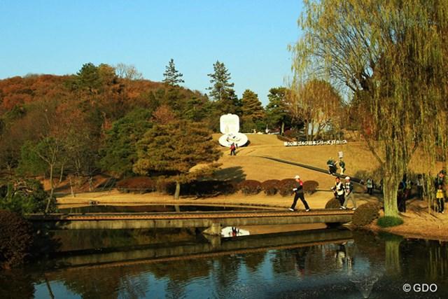 2013年 ゴルフ日本シリーズJTカップ 3日目 最終組 最終18番グリーンに向かう最終組。
