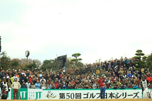 2013年 ゴルフ日本シリーズJTカップ 最終日 宮里優作 優作の初優勝を見よう、優作を応援しよう、と最終組には多くのギャラリーが。