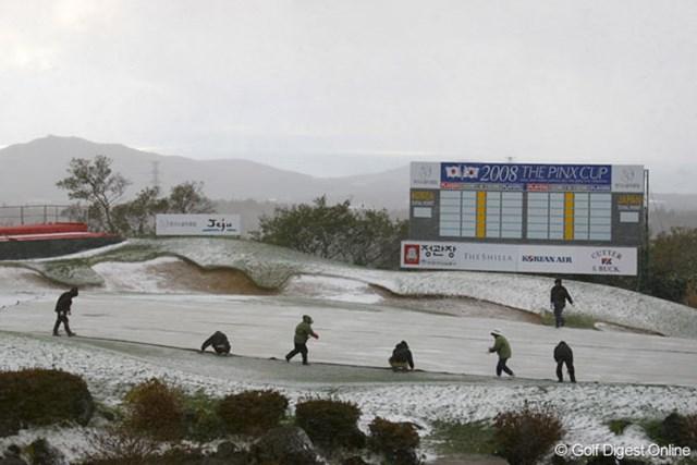 韓国のスタッフ達 グリーン保護の為、シートで覆う韓国のスタッフ達。強烈な寒さだ…。
