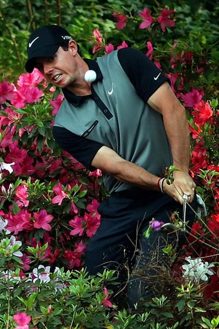お花畑からマキロイ。ギリギリで予選通過(Andrew Redington/Getty Images)