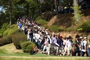 2014年 つるやオープンゴルフトーナメント 最終日 ギャラリー