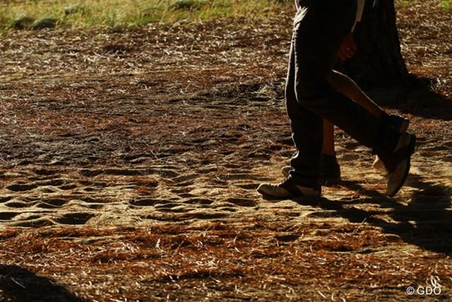 コースのある土地は砂地。カート道も砂地で歩きにくい