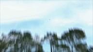 AT&Tペブルビーチナショナルプロアマ 最終日 ハイライト