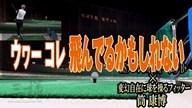 NSプロ レジオ フォーミュラ B+×筒康博【クラブ試打 三者三様】
