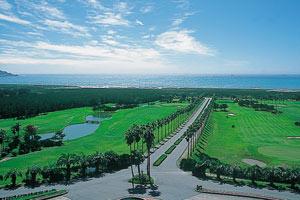 館山 カントリー クラブ 館山カントリークラブ 公式サイト|館山でのゴルフなら館山CCへ