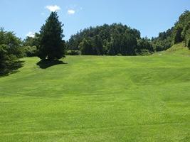 奈良県・奈良パブリックゴルフ場